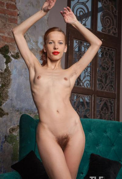 Девушка с волосатой киской и аналом 12 фото
